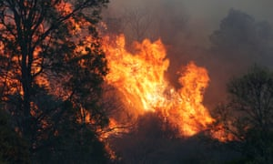 A bushfire near the rural town of Canungra in the Scenic Rim of south-east Queensland. Twenty-two homes have been lost in Queensland and NSW so far
