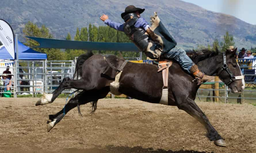 A competitor at Wanaka rodeo. 'Horses, bulls and calves are tormented so a few people can play 'cowboy',' says one protester.