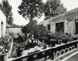 The inner yard of the Casa Azul