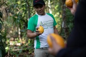Edmilson Estevão shows a ripe cacao fruit.