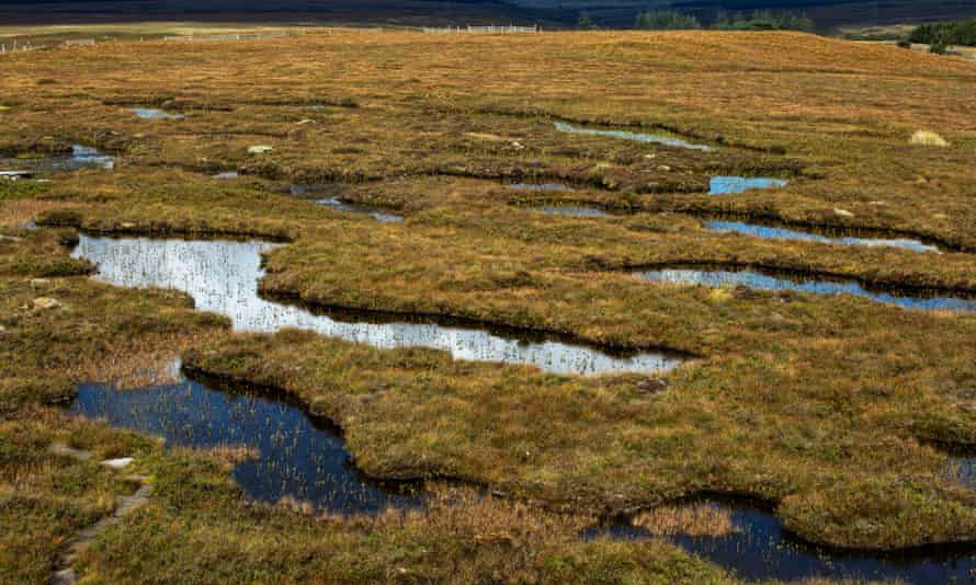 The Flow Country of Caithness and Sutherland where the peat is up to 10 metres deep.
