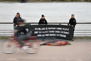 Members of the marine conservation organisation Sea Shepherd Conservation Society hold a banner reading 'Thousands of dolphins like this one are massacred each year in France so that you can eat fish,' as they stand behind a dead dolphin in Bordeaux.