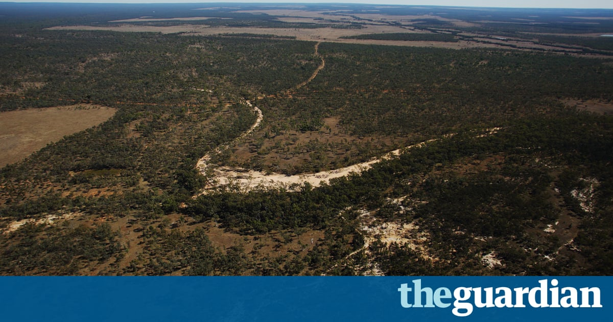 Adani Carmichael mine to get six-year holiday on royalties, report says