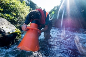 A consultant for Genesis Energy conducts a water quality study