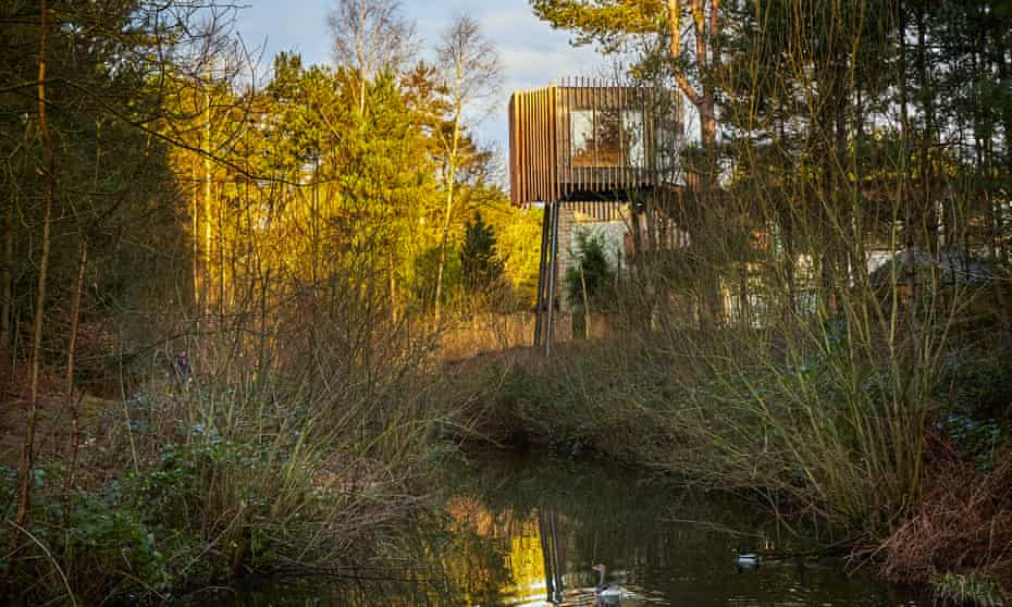 A treetop sauna in the middle of woodland