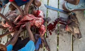 pig slaughter asmat
