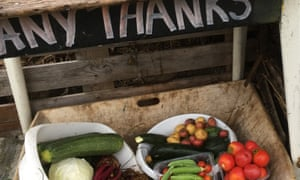 Foodbank donations: from allotment callout 2019