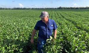 Soybean farmer Raymond Schexnayder Jr on his farm outside Baton Rouge, in Erwinville, Louisiana, on 9 July 2018.