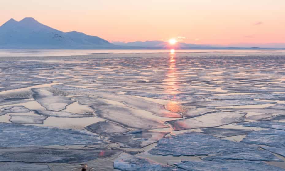 Arctic sea ice under the midnight sun.