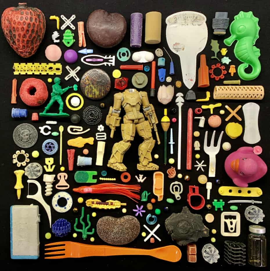 Colourful plastic objects found by a beachcomber laid out as if they were in a display case in a museum
