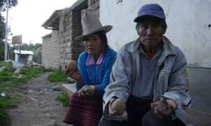 Alejandro Rosales, 62 and his wife Guillerma Jamenca, 60, hold out pest-ridden potatoes