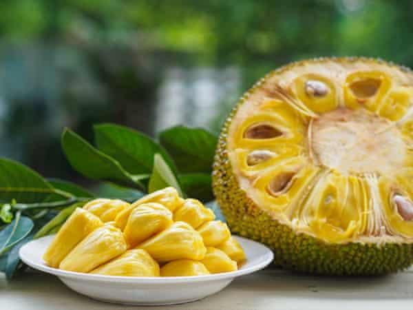 Jackfruit in its raw, unripe form