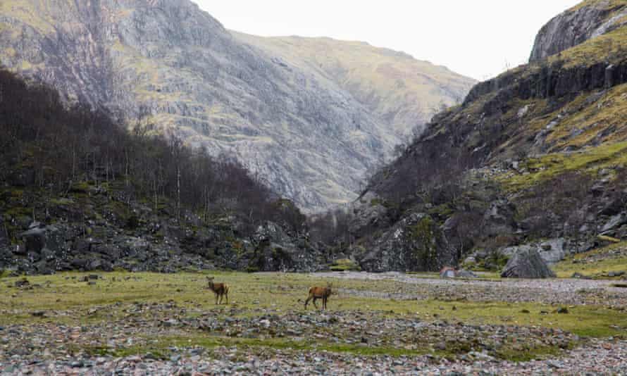 Lost Valley. Wild Guide Scotland
