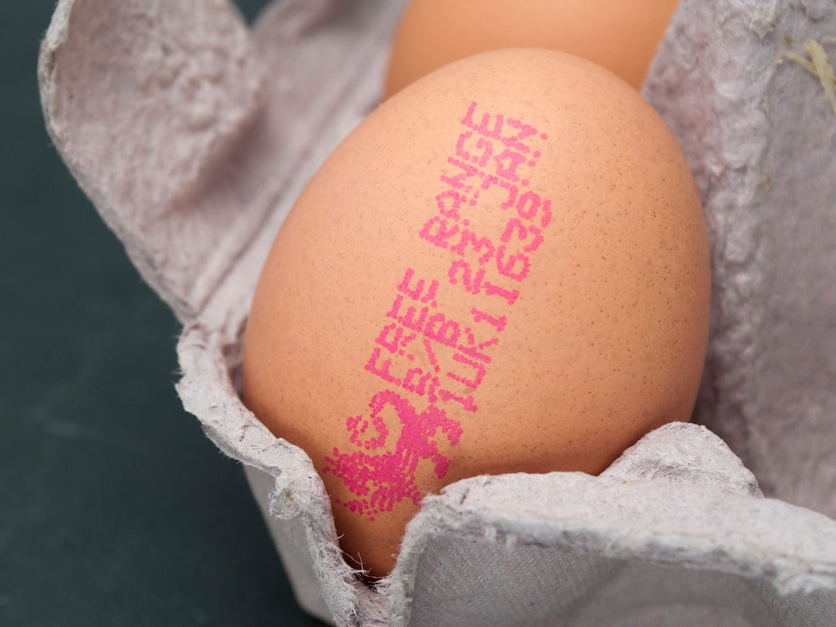 Britons Throw Away 720m Eggs A Year Over Best Before Date Fears