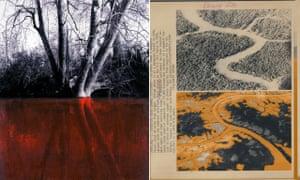 Left, Choccolocco Creek, West Anniston, Alabama 2012; right, mangroves in Vietnam sprayed with Agent Orange.