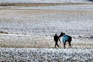 Strasburg, PAA farmer walks his horse across a baron field in freezing temperatures.