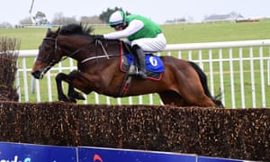 Mullins and his mount kept on their feet in the Novice Chase as four from nine fell.