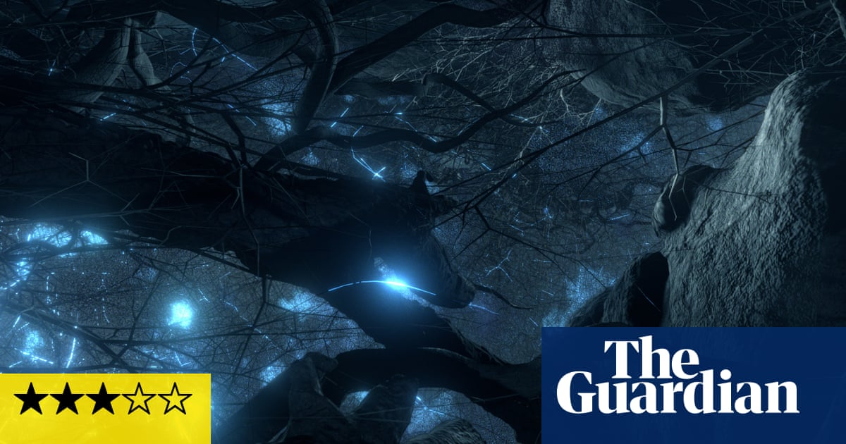 Fantastic Fungi review – how mushrooms could save the world