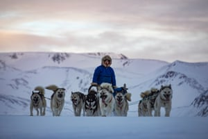 Åge Hammeken Danielsen, a commercial hunter from Ittoqqortoormiit, drives his sled dogs