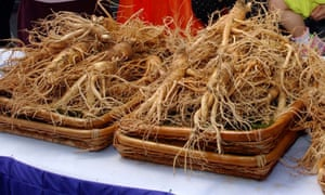 Ginseng – and black cohosh and evening primrose oil – are no more effective than a placebo, studies have found.
