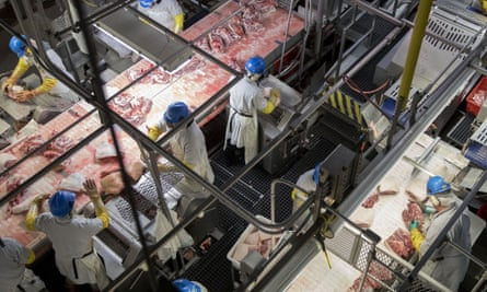 'Individually, we must stop eating animal products. Collectively, we must transform the global food system and work toward ending animal agriculture.'