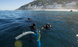 Underwater archaeologists at the site of the São José slave shipwreck near the Cape of Good Hope in South Africa.