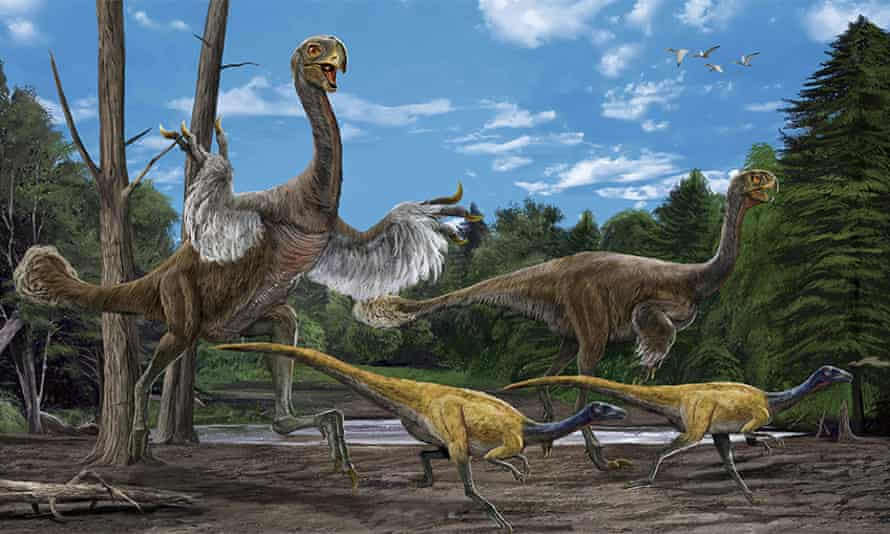 A reconstruction of 8m long Oviraptorosaur, Gigantoraptor and other avian and non-avian dinosaurs, which feature in the Dinosaur of China exhibition at the Nottingham Natural History Museum.