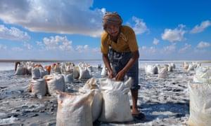 Man collecting salts at Bar al Hikman, Oman