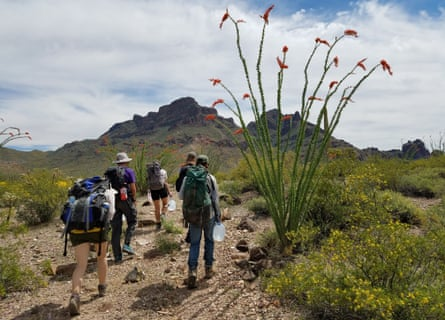 Volunteers for No More Deaths carry gallons of water out in the desert.