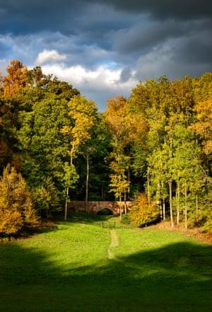 The Golden Valley, part of Hertfordshire's Ashridge estate.