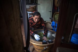Zhu Chaorong roasts newly harvested tea leaves in an pan at his home where his family have a plantation