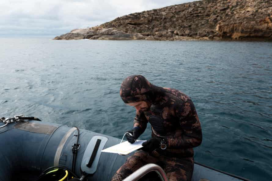 Scientist Sam Owen completes his monitoring of marine species after a dive nearby Massillon Island, part of the Nuyts Archipelago off the coast near Ceduna in the Great Australian Bight