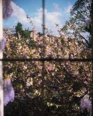 Susanne's view, London.