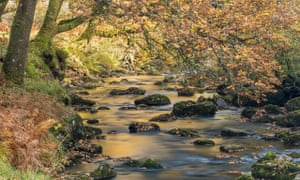 Autumn colours along the banks of Badgworthy Water, Doone Valley, Exmoor National Park, Somerset, England