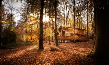 Forest Holidays cabin in Blackwood, Hampshire