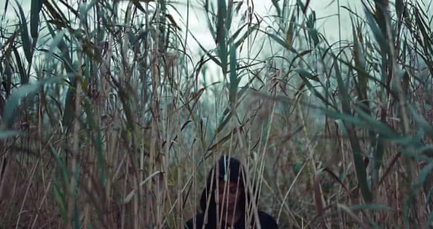 Back to nature ... Beyoncé gets swampy.