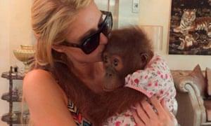Paris Hilton holding an orangutan in Dubai