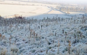 A frosty field near Kingsclere, Hampshire, after one of England's coldest nights so far this autumn