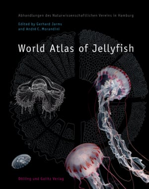 The World Atlas of Jellyfish