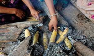 The Tsimané people live on a diet of rice, plantain, manioc and corn, with a small amount of wild game and fish – and around six hours' exercise every day.