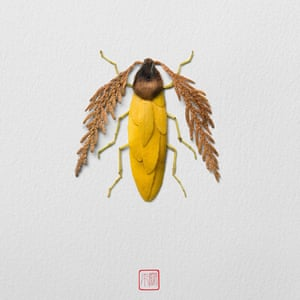 An illustration by artist Raku Inoue who uses garden waste including sticks, seeds and petals, to create his Natura Insects series.