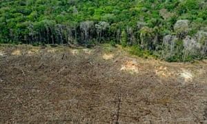 This photo taken on August 07, 2020 shows an aerial picture of a deforested area close to Sinop, Mato Grosso State, Brazil. (Photo by Florian PLAUCHEUR / AFP)