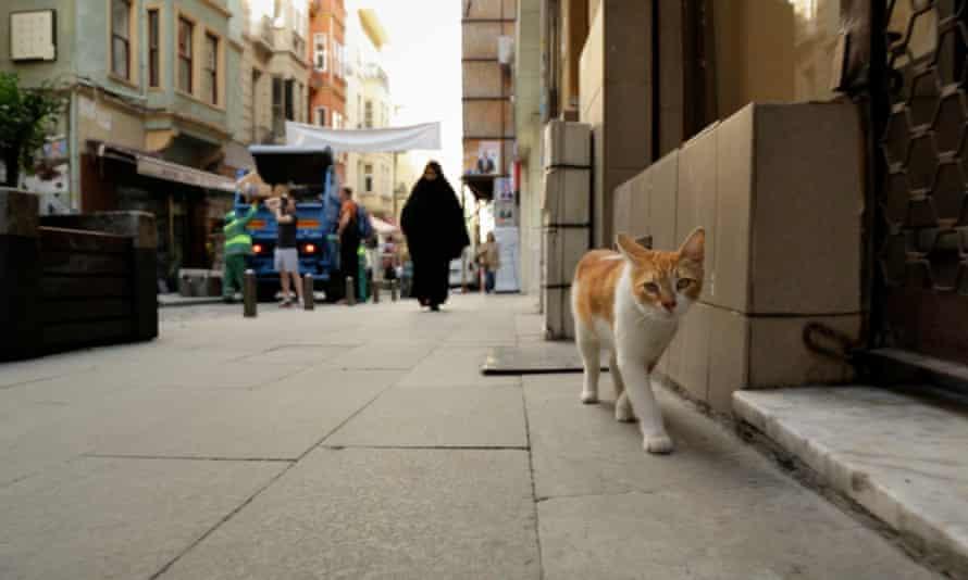 Sari strolls the Istanbul streets.