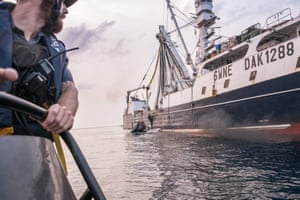 A small rubber boat, staffed by volunteers from Sea Shepherd and Liberian coastguards, approaching the Oriental Kim