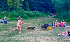 A naked sunbather chases after a wild boar