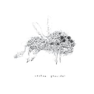 Album cover for Geocidal by tētēma
