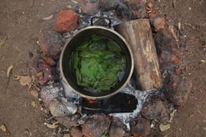 Yolngu sisters and healers, have a pot on the fire, with healing properties.