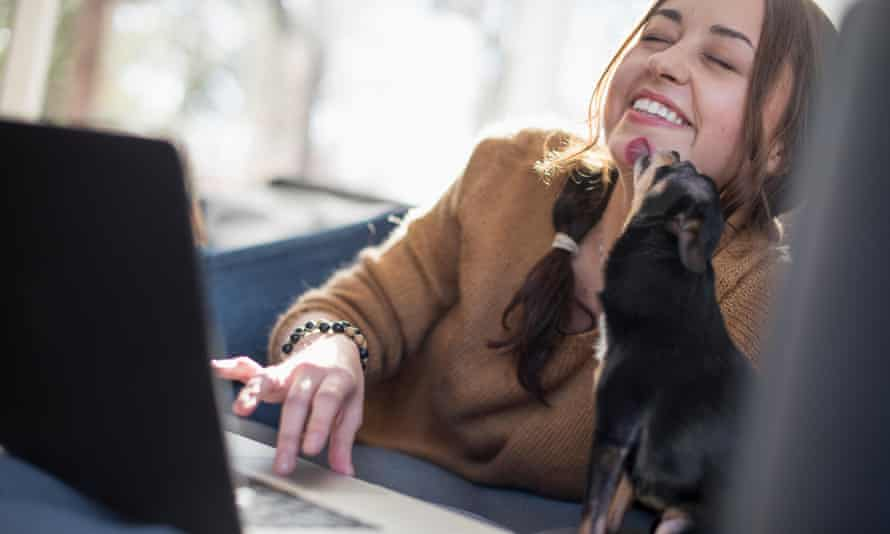 Woman lying on a sofa looking at her laptop, smiling. A small dog licking her face.