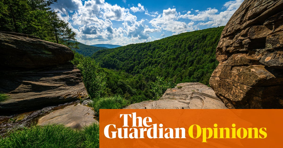 I dreamed of moving to the country – until I went on a rural summer holiday