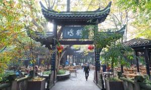 Local people take tea in a temple garden in Chengdu.